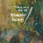Majestic Beauty 5x7 ART CAR..